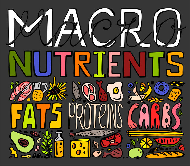 Main food groups - macros. Carbohydrates, fats, and proteins.