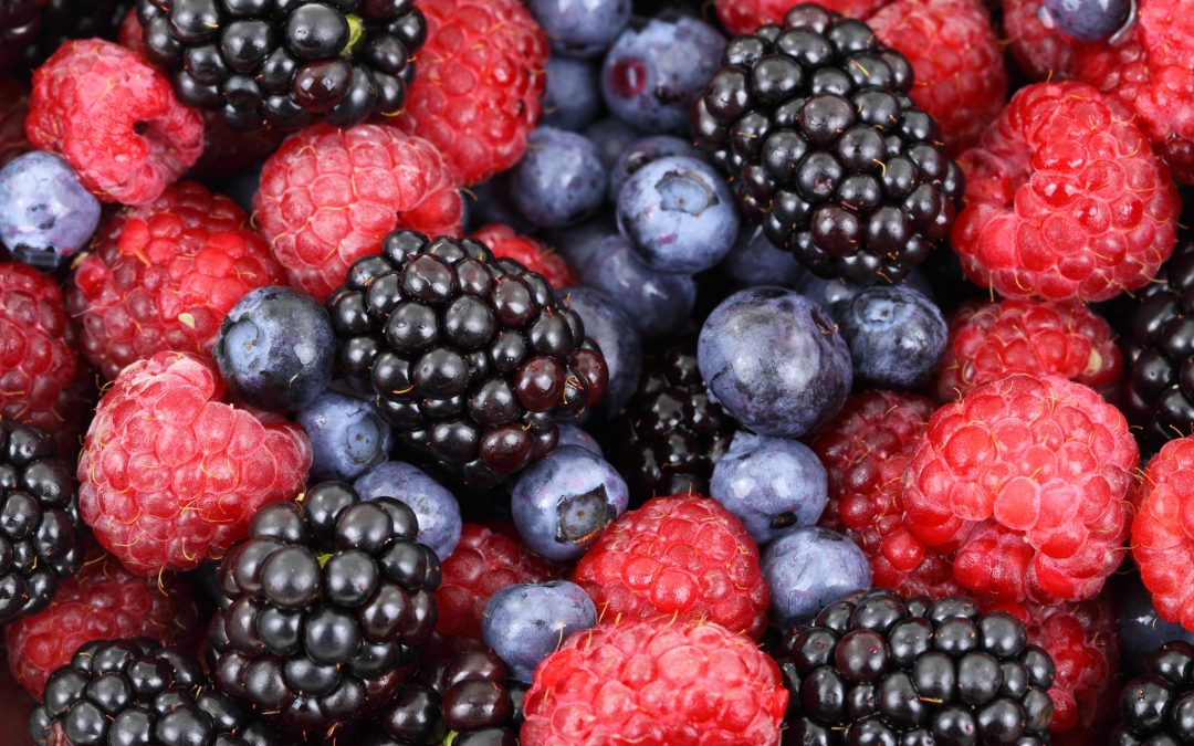 Antioxidants and Fertility