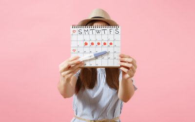 Understanding Ovulation – Plus FREE Tracking Guide