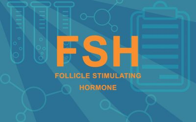 FSH & Fertility: What's the Connection